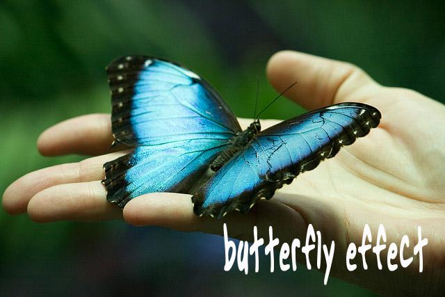 """Tổng kết buổi chia sẻ sách – """"Hiệu ứng cánh bướm"""" ngày 14/09/2016"""